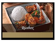rice-box-ok_d6b2c0c5817a55af744bae358a900902